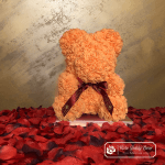 Rose Bear 40 cm – Salmon with Ribbon (Box + Rose Petals)